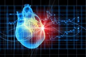 Researchers think they may have found a key factor in regenerating heart muscle.