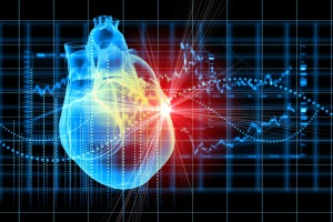 MADAM, a new genetics-based approach to studying stem cells, can directly detect the moment that a heart cell divides.