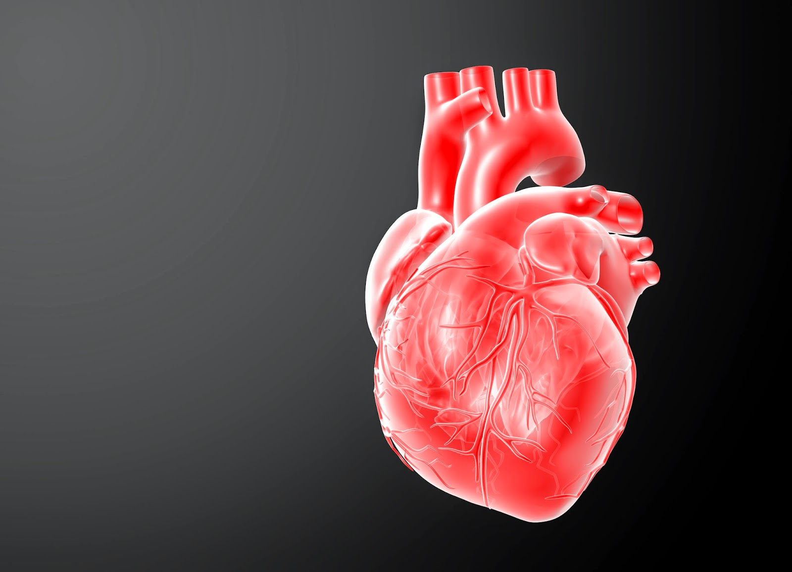 Protein Drip Spurs Stem Cells to Save Heart Tissue   The ...