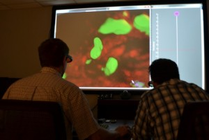 Researchers at Drexel touring a group of cells using 3D glasses.