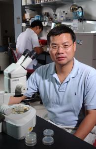 Professor Ding Xue of the University of Colorado Boulder. [Credit: Casey A. Cass, University of Colorado]