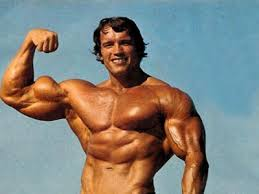 Arnold Schwarzenegger: Photo courtesy Awesome-Body.info