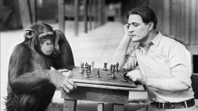 Chimps and Humans: So similar yet so different