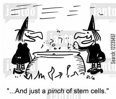 '...And just a pince of stem cells.'