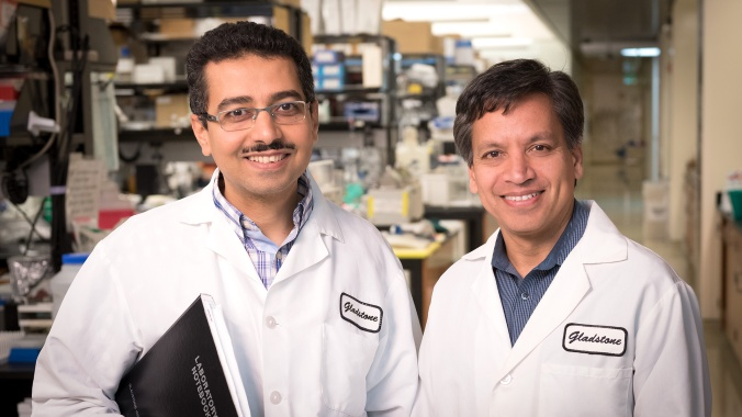 Tamer Mohamed and Deepak Srivastava, Gladstone Institutes