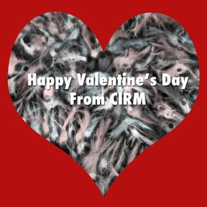 cirm-valentines-day