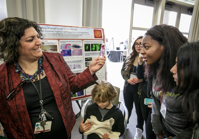 Dr. Francesca Mariana shows off a mouse skeleton that has been dyed to show bones and cartilage at the Stem Cell Day of Discovery event held at the USC Health Sciences Campus in Los Angeles, CA. February 4th, 2017. The event encourages students to learn more about STEM opportunities, including stem cell study and biotech, and helps demystify the fields and encourage student engagement. Photo by David Sprague