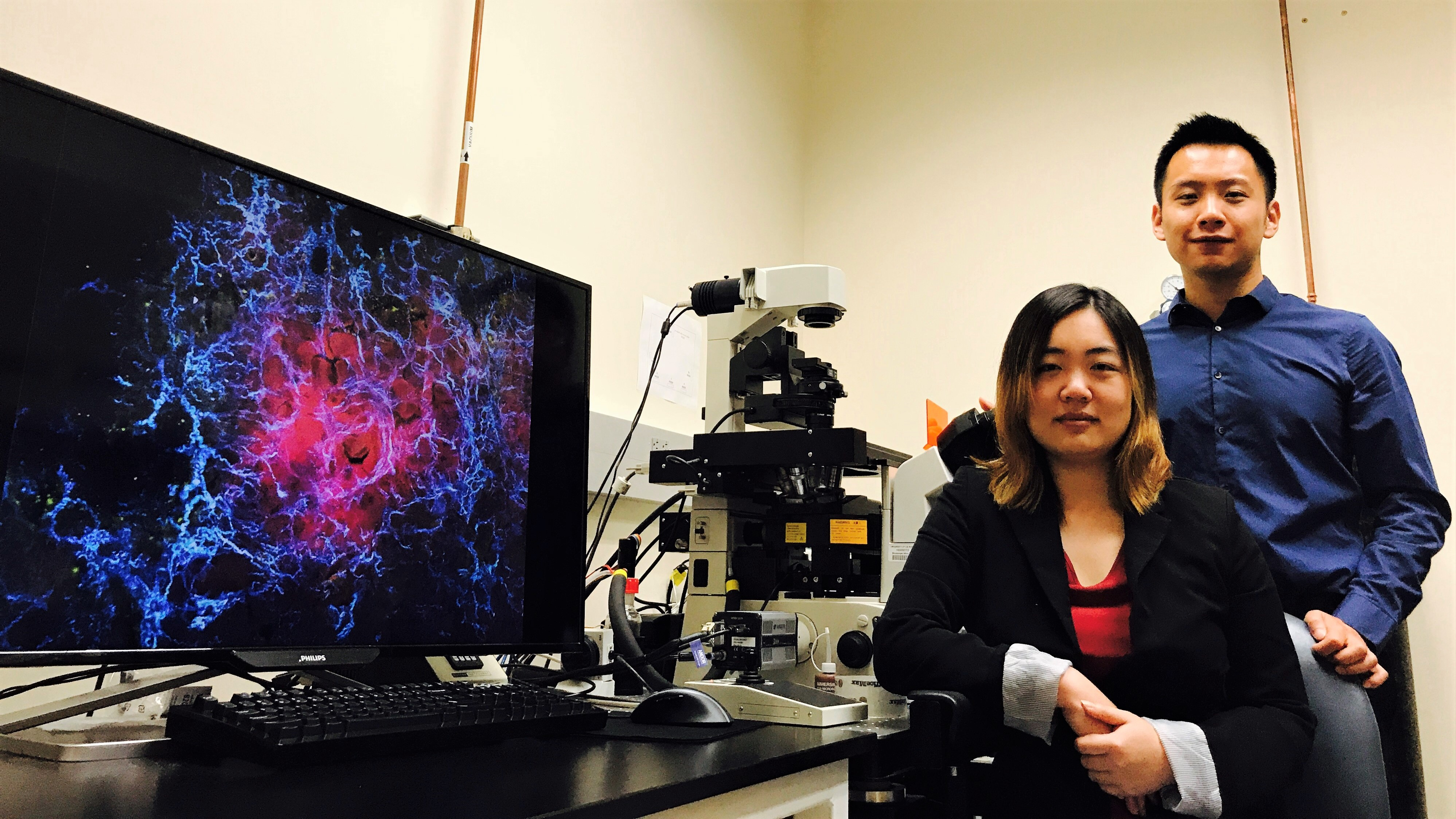 uci-stem-cell-therapy-attacks-cancer-by-targeting-unique-tissue-stiffness