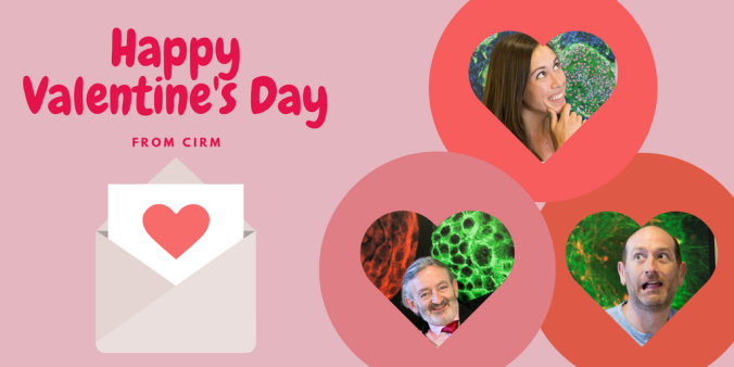 A Tribute to Stem Cells on Valentine\'s Day | The Stem Cellar